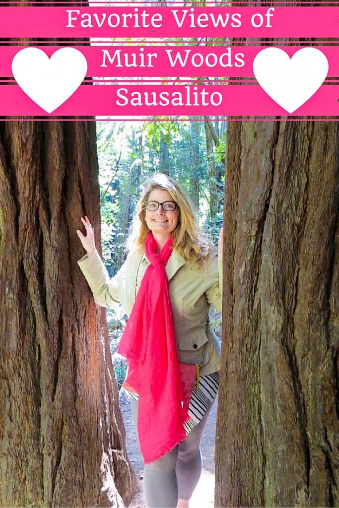 Favorite Views of Muir Woods and Sausalito   visit Muir Woods and Sausalito