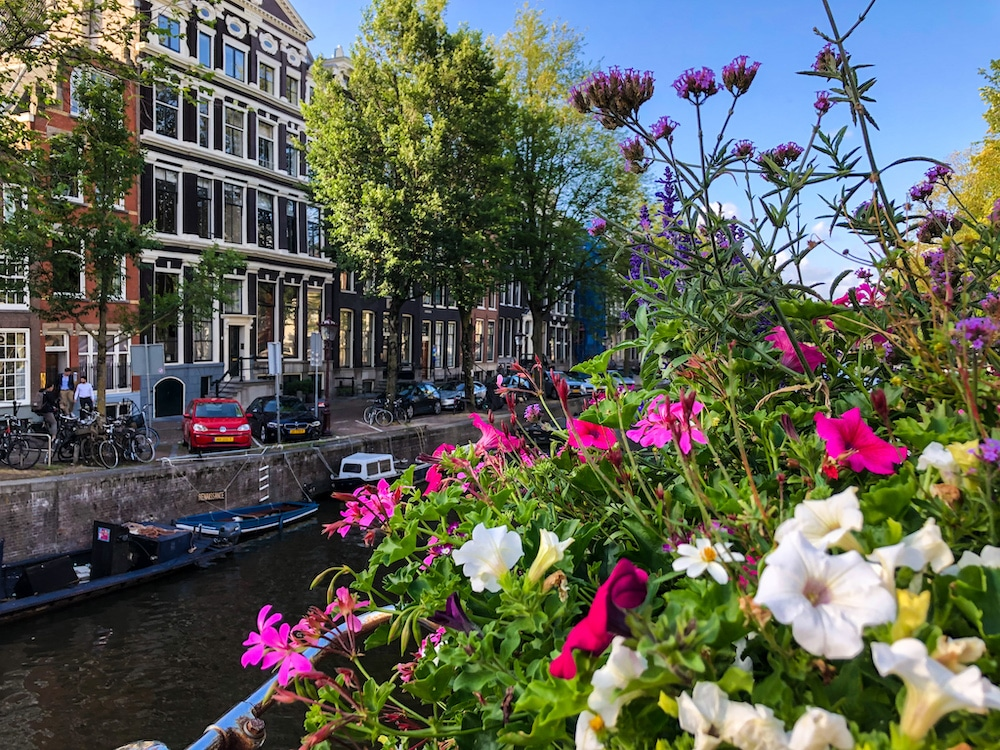 2 days in amsterdam itinerary includes snapping lovely pictures