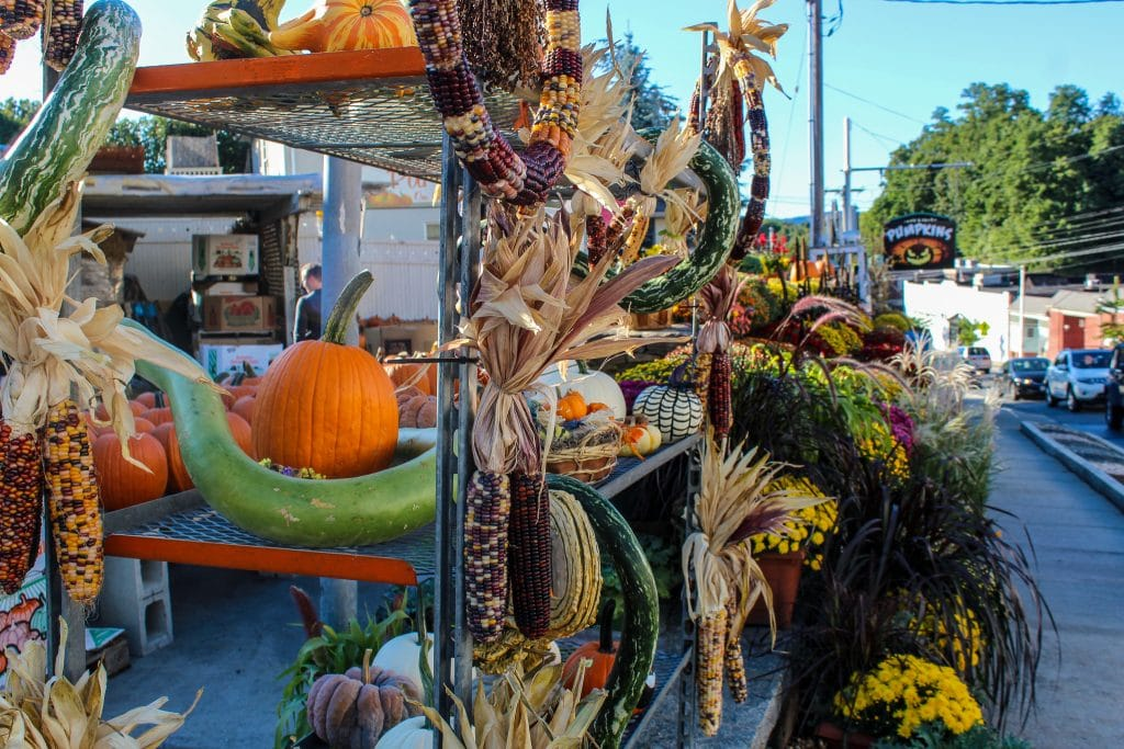 day trips from nyc fall: time for spooky season with pumpkins