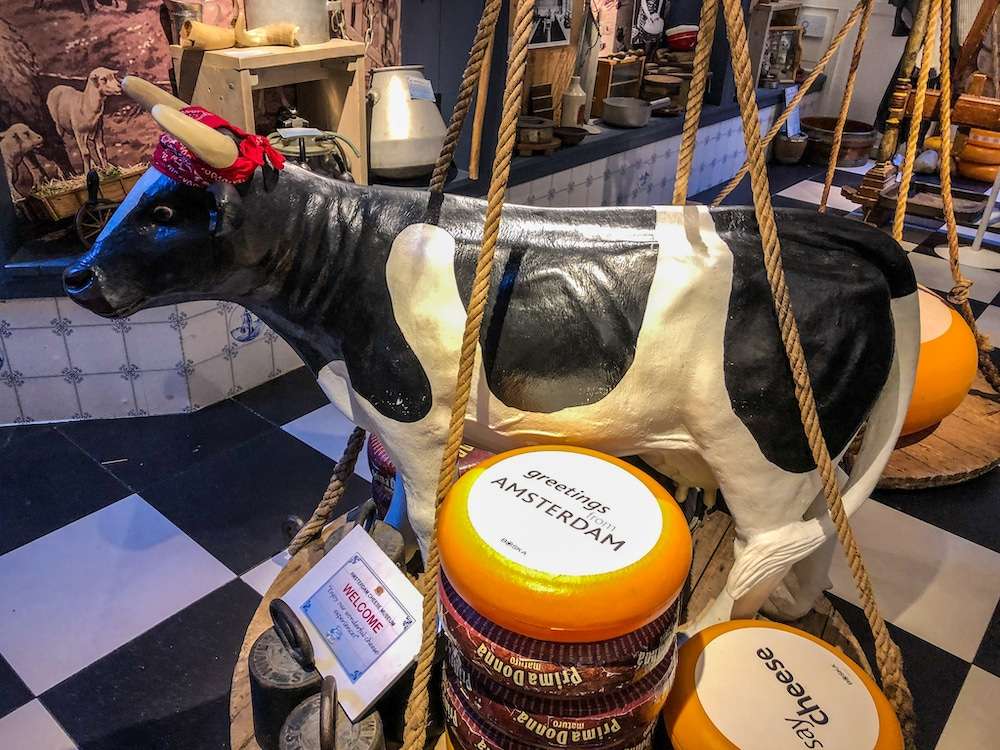 a stop in a cheese museum for my netherlands itinerary 5 days