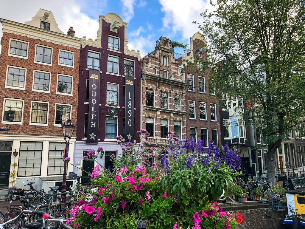 5 days in netherlands