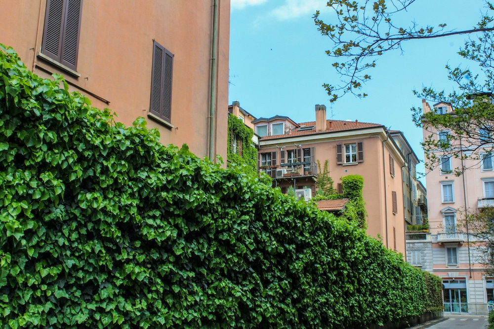 solo travel milan see green ivy