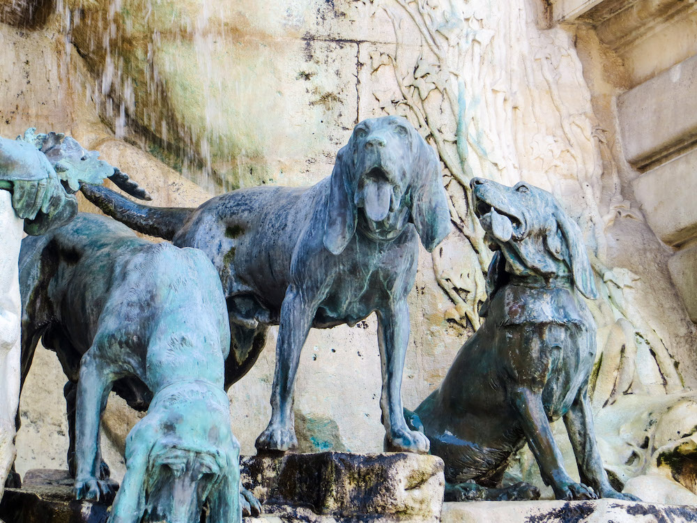 budapest itinerary 4 days: feel free to bring the dogs