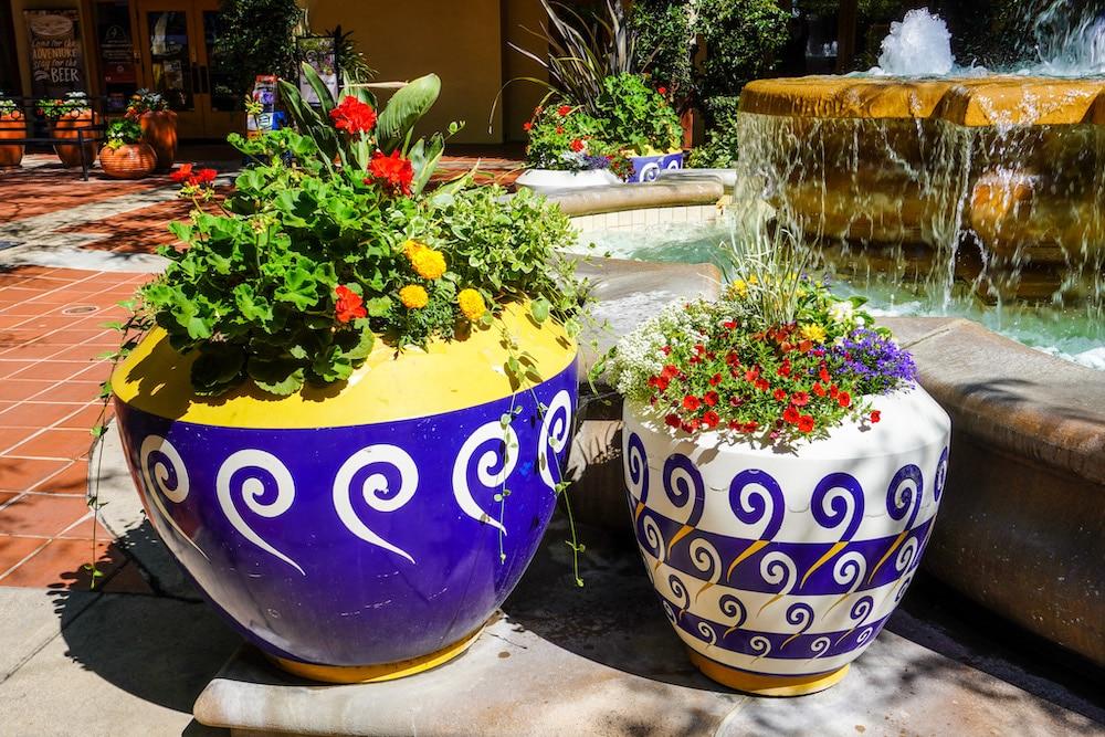 concord ca pots are so pretty