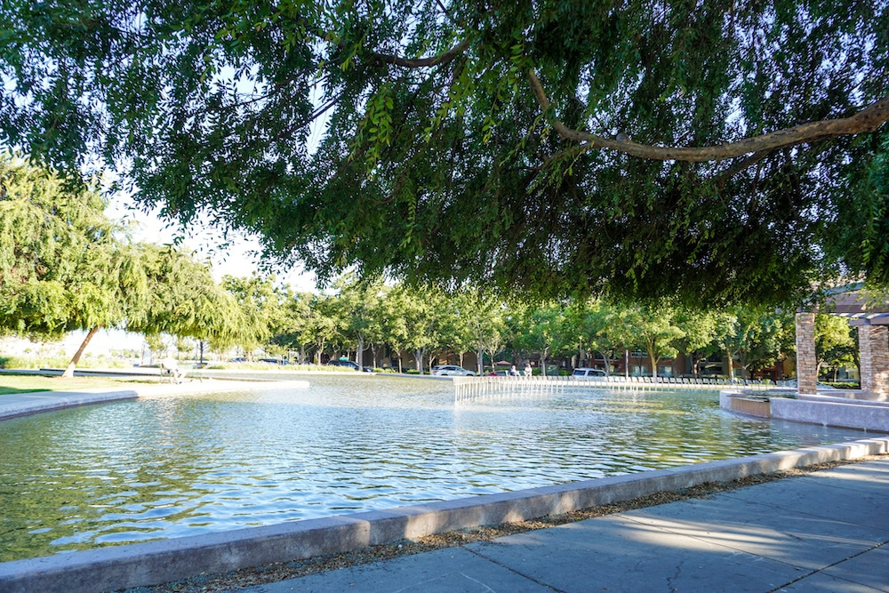 chilling at a gorgeous park in dublin ca