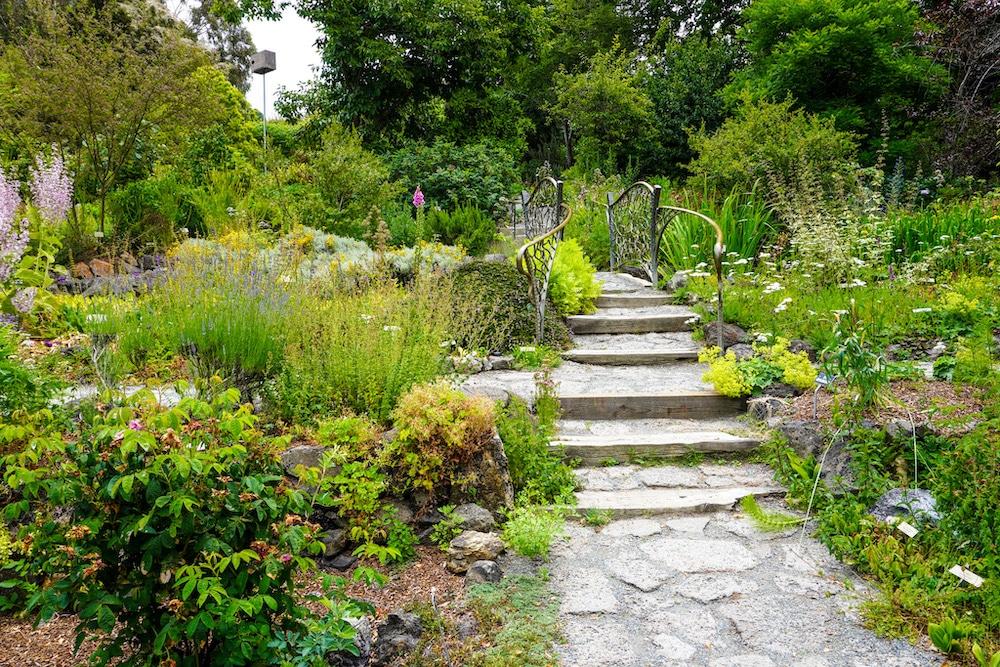 exploring uc berkeley gardens